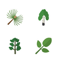 Flat icon bio set of timber forest foliage and vector