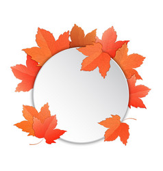 frame with maple leaves template for a voucher vector image
