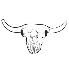 hand drawn skull a bull vector image
