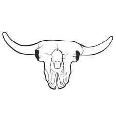 hand drawn skull of a bull vector image