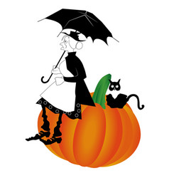 pumpkin old cat vector image