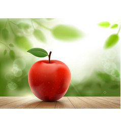 Red ripe apple fruit on a background nature vector