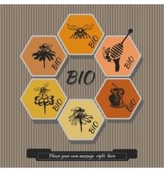 Set honey labels 2 vector