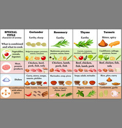 set of spices and herbs and their application for vector image
