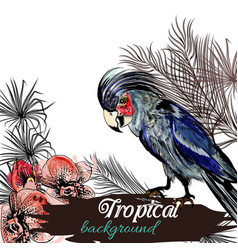 background on tropical theme palm leafsm parrot vector image