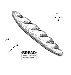 Baguette bread drawing bakery product vector