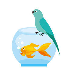 Canary and goldfish in bowl vector