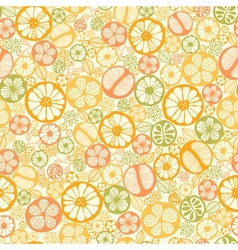 Citrus slices seamless pattern background vector image
