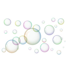 design soap bubbles on a white background vector image
