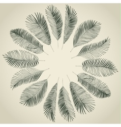 Hand drawn background of palm leaves vector