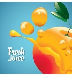 orange fruit and fresh juice splash vector image