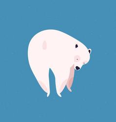 Polar bear flat huge arctic vector