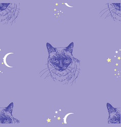 Seamless pattern with cat stars and moon on blue vector