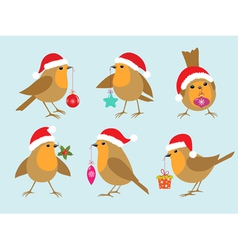 Christmas Robins vector image
