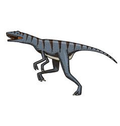 Dinosaur velociraptor skeletons fossils vector