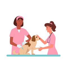 patient dog appointments at veterinary clinic vector image