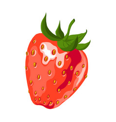 red strawberry vector image vector image