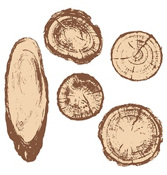 Wood textute vector