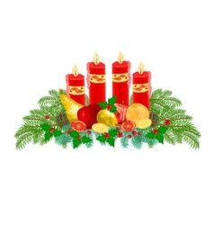 Christmas decoration Advent wreath with fruit vector image vector image