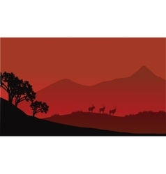 Antelope silhouette on the mountain vector