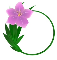 Beautiful round lily flower background vector image