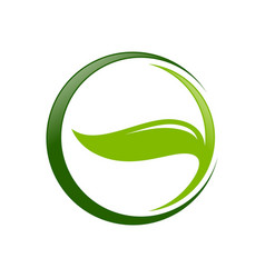 eco friendly leaf circle symbol design vector image