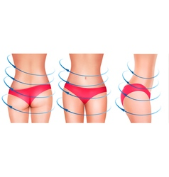 Fit female body in underwear vector