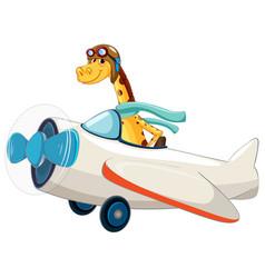 Giraffe riding an airplane vector