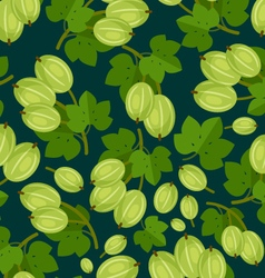 Gooseberry Berries Pattern vector image