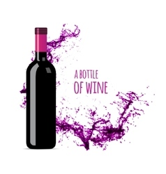 Red wine splash with bottle vector image