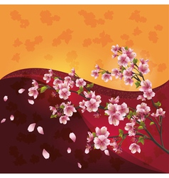 Sakura blossom japanese cherry tree on bright vector