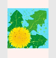 square card yellow dandelion vector image