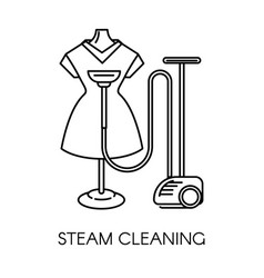 Steam cleaning service company dress on vector