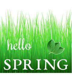white phrase hello spring on green grass vector image