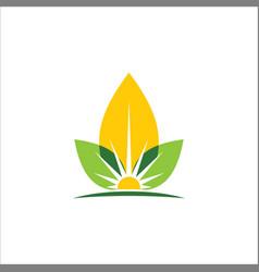 eco leaf sun organic logo vector image