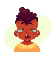 Little boy face crying facial expression vector image vector image