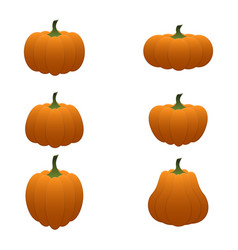 cartoon pumpkin set vector image