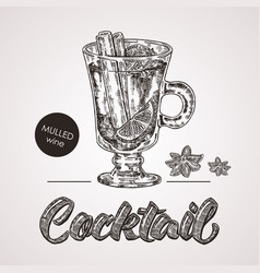 hand drawn sketch cocktail with text mulled wine vector image