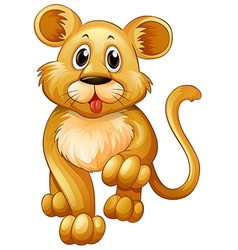 Little lion with happy face vector