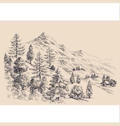 mountain panorama alpine vegetation vector image