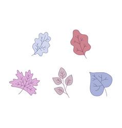 plant leaves set - decorative vector image