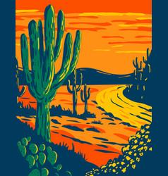 Saguaro cactus at dusk in saguaro national park vector