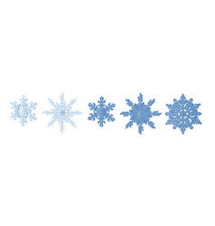 snowflake icon set winter christmas blue color vector image