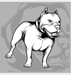 Dog breeds american pit bull hand drawing vector