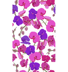 pink and purple orchid floral seamless pattern vector image