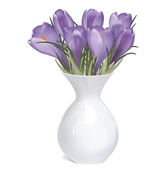Spring bouquet crocuses in vase vector