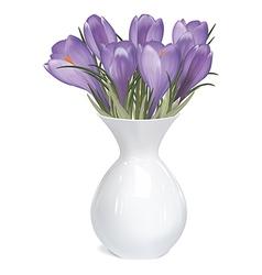 Spring bouquet of crocuses in vase vector