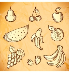 Vintage sketched fruits icon set vector image