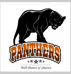 panthers mascot - vector image vector image