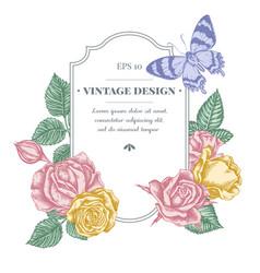 Badge design with pastel alcides agathyrsus roses vector